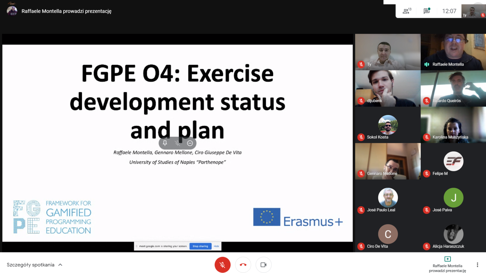 Screenshot from the online meeting (TPM5)